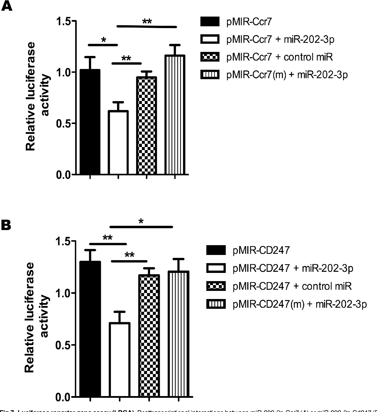 Fig 7. Luciferase reporter gene assay (LRGA). Posttranscriptional interactions between miR-202-3p-Ccr7 (A) or miR-202-3p-Cd247 (B) were assessed by LRA.pMIR-Ccr7 or pMIR-Ccr7(m) and pMIR-Cd247 or pMIR-Cd247(m) 3´ UTR luciferase plasmid constructs were transfected into human HEK-293T cells. Cotransfections with miR-202-3p or control (scrambled) miRNA were also performed to show the specificity of the miRNA, and co-transfections with the mutant (m) plasmid constructs were performed to show specificity of the 3´ UTR for the interactions. The data are presented as the means and standard error of mean (SEM). The differences were evaluated by one-way ANOVA followed by Bonferroni´s test, and p < 0.05 was considered statistically significant when the wild-type 3´ UTR pMIR was compared to the mutant (m) 3´ UTR sequence in the presence of the respective miRNAmimic.