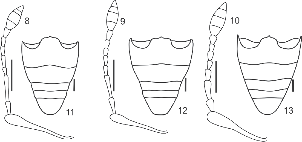 figure 8–13