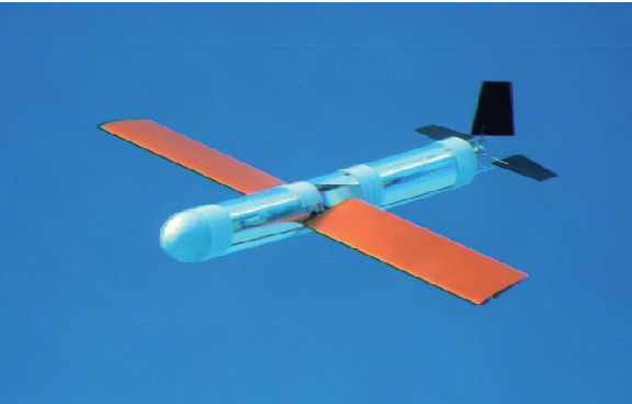 Modelling and motion simulation of an underwater glider with