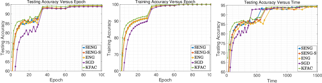 Figure 4 for Sketchy Empirical Natural Gradient Methods for Deep Learning
