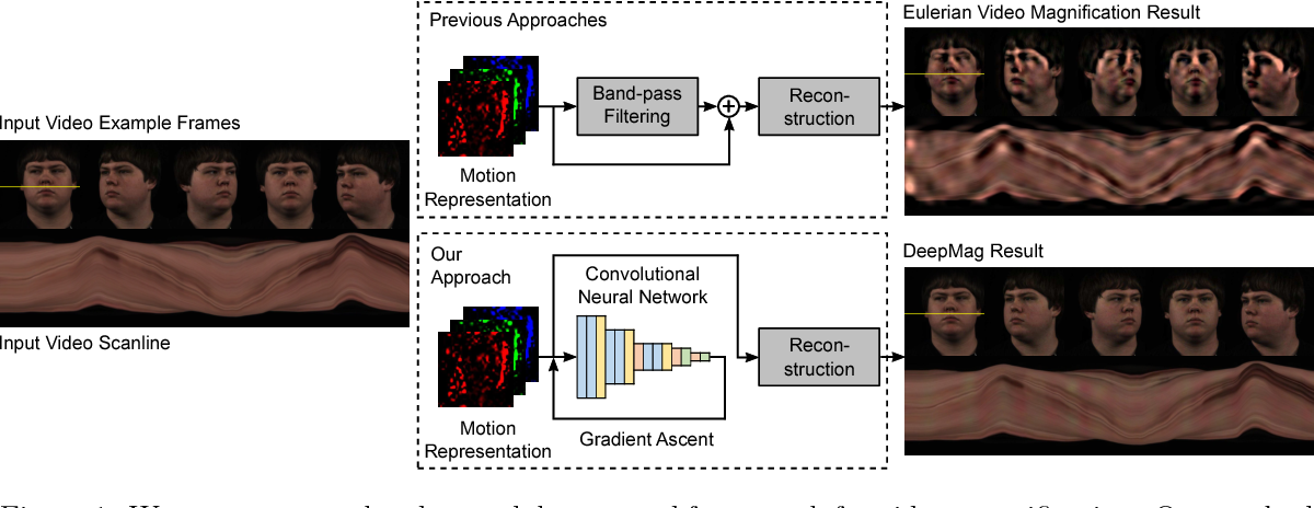 Figure 1 for DeepMag: Source Specific Motion Magnification Using Gradient Ascent