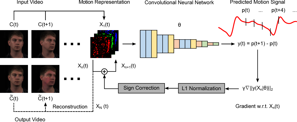 Figure 3 for DeepMag: Source Specific Motion Magnification Using Gradient Ascent