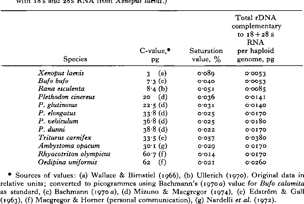 Table 2. The amount of rDNA per haploid genome of 12 species of amphibians