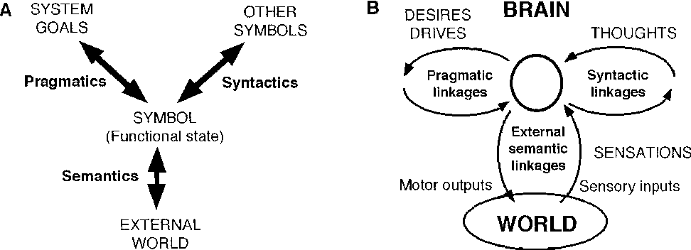 Figure 6 From Symbols And Dynamics In The Brain Semantic Scholar