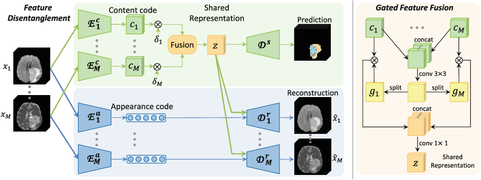 Figure 1 for Robust Multimodal Brain Tumor Segmentation via Feature Disentanglement and Gated Fusion