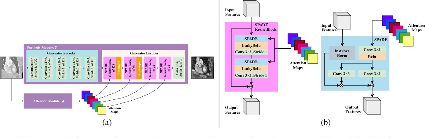 Figure 3 for Self-Attentive Spatial Adaptive Normalization for Cross-Modality Domain Adaptation