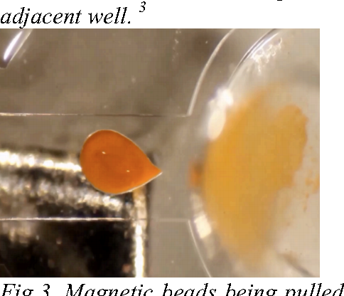 PDF] Combining Electrowetting and Magnetic Bead Manipulations for