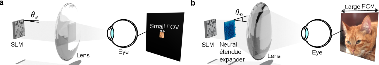 Figure 1 for Neural Étendue Expander for Ultra-Wide-Angle High-Fidelity Holographic Display