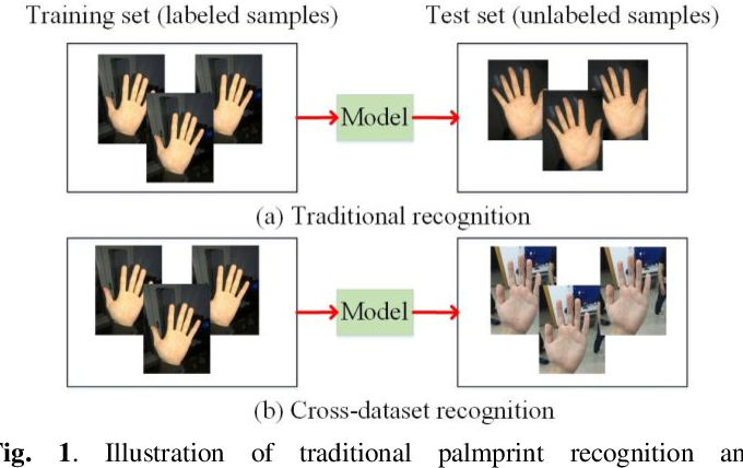 Figure 1 for A Joint Pixel and Feature Alignment Framework for Cross-dataset Palmprint Recognition