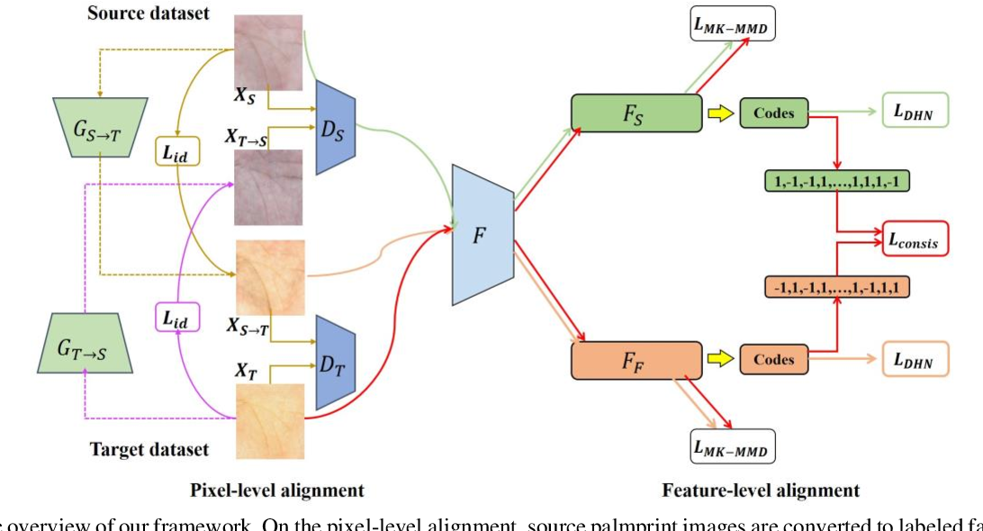 Figure 2 for A Joint Pixel and Feature Alignment Framework for Cross-dataset Palmprint Recognition