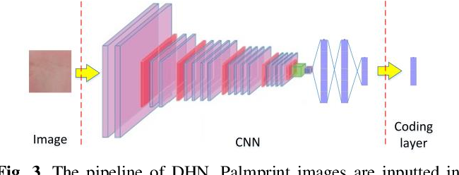 Figure 3 for A Joint Pixel and Feature Alignment Framework for Cross-dataset Palmprint Recognition