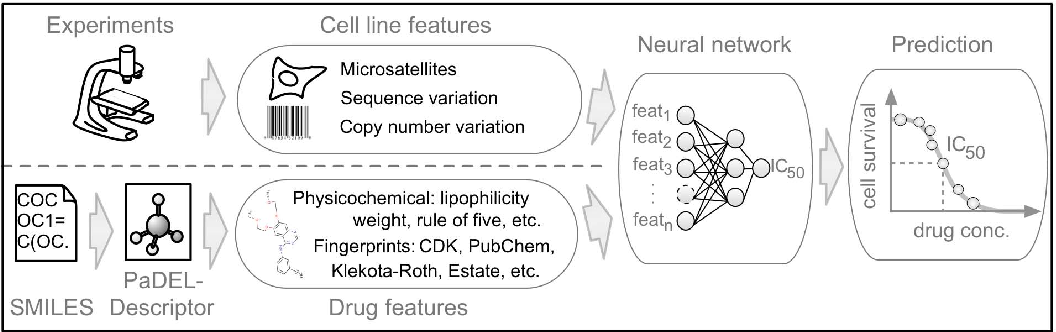 Figure 1 for Machine learning prediction of cancer cell sensitivity to drugs based on genomic and chemical properties
