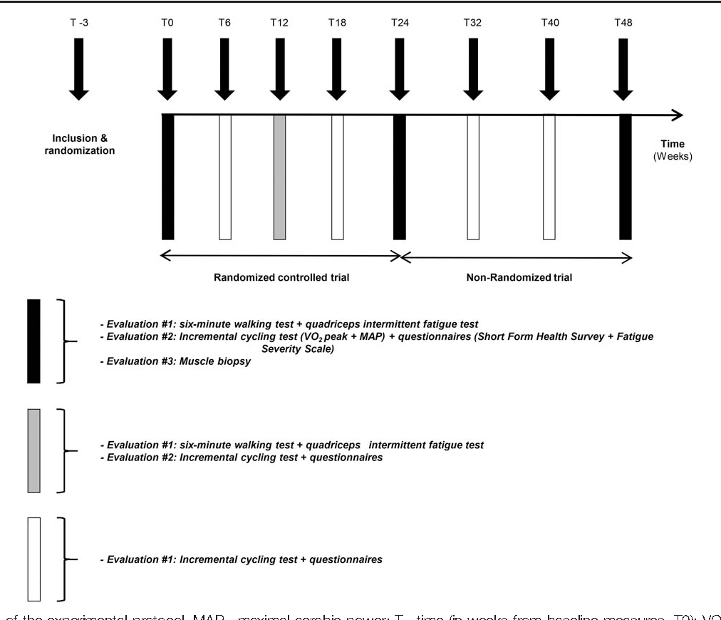 Safety and efficacy of a 6-month home-based exercise program in ...