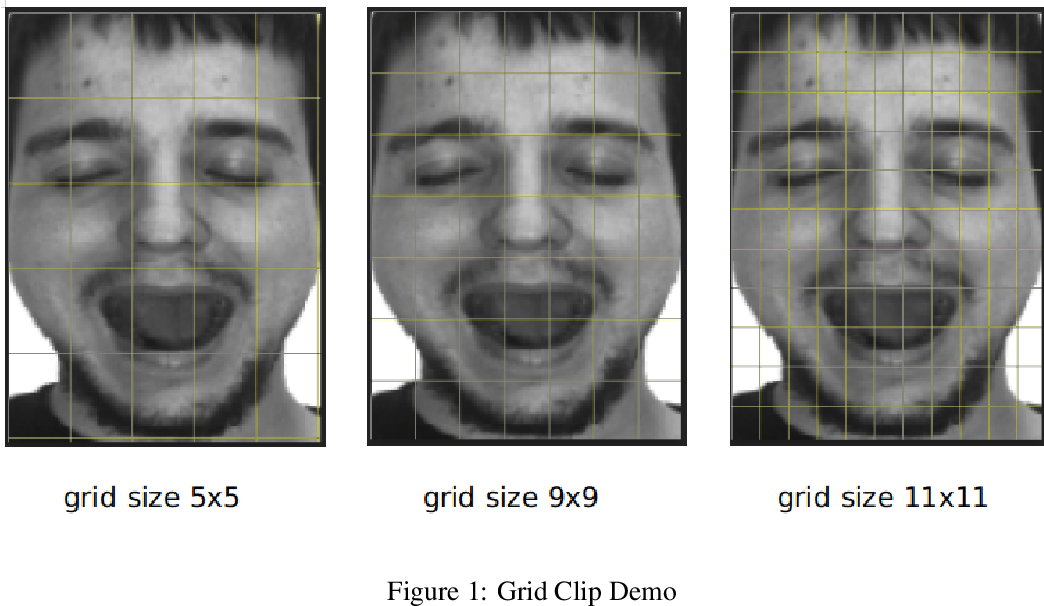Figure 1 for Masked Face Image Classification with Sparse Representation based on Majority Voting Mechanism