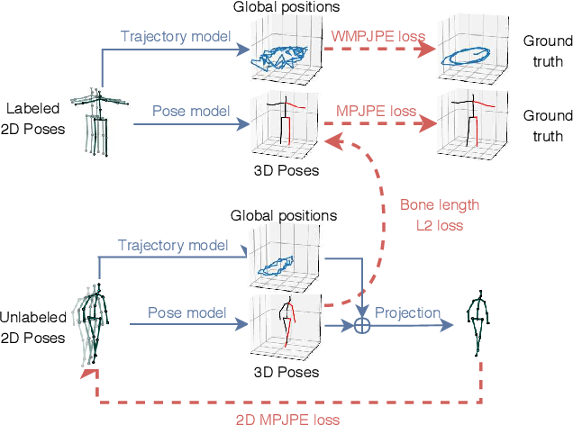 Figure 4 for 3D human pose estimation in video with temporal convolutions and semi-supervised training