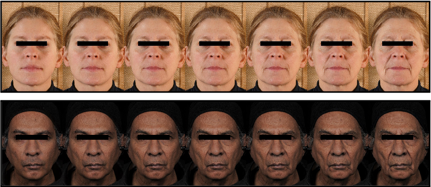 Figure 1 for AgingMapGAN (AMGAN): High-Resolution Controllable Face Aging with Spatially-Aware Conditional GANs
