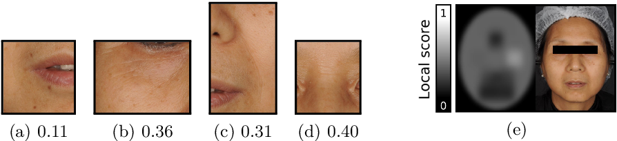 Figure 3 for AgingMapGAN (AMGAN): High-Resolution Controllable Face Aging with Spatially-Aware Conditional GANs