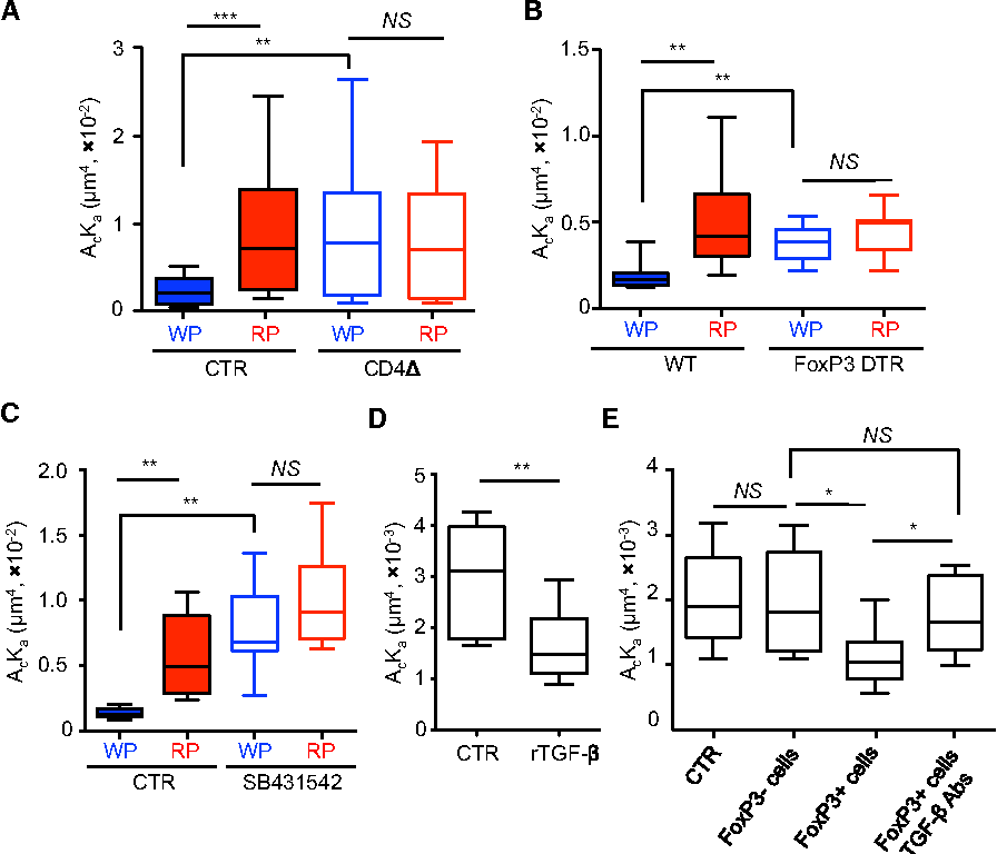 Local Cellular And Cytokine Cues In The Spleen Regulate In Situ T