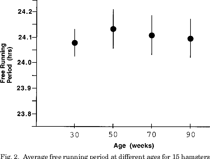 PDF] Stability of circadian timing with age in Syrian hamsters
