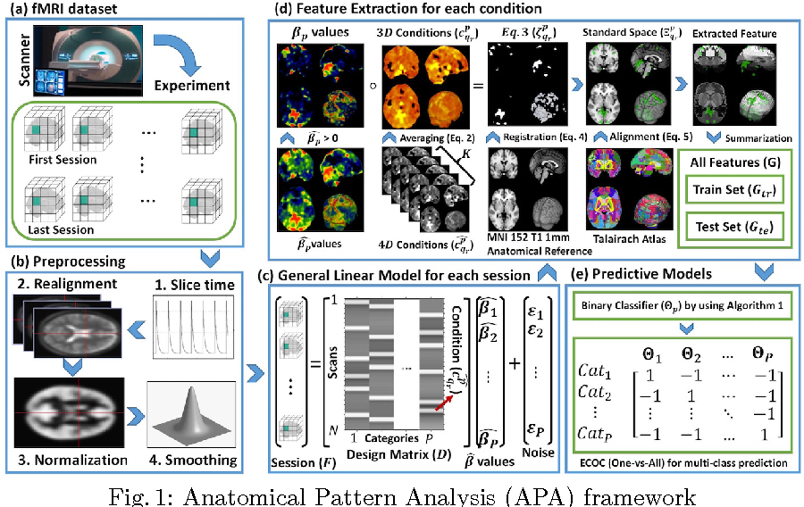 Figure 1 for Decoding visual stimuli in human brain by using Anatomical Pattern Analysis on fMRI images