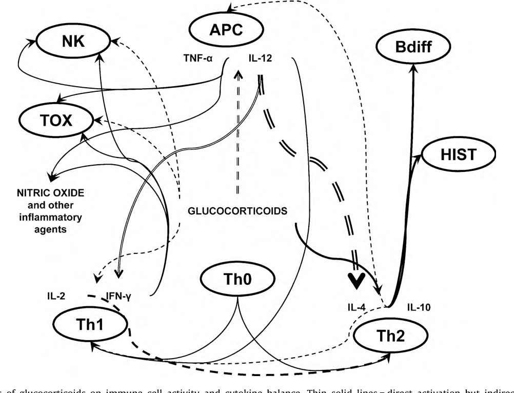 Inflammation as a psychophysiological biomarker in chronic