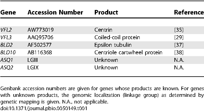 Table 1. Genes Shown in This Study to Be Required for Centriole Positioning