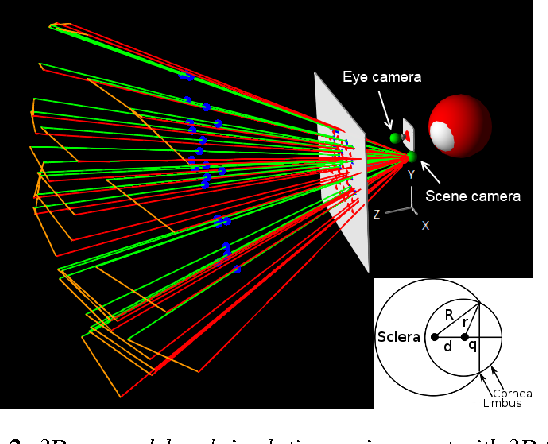 Figure 1 for 3D Gaze Estimation from 2D Pupil Positions on Monocular Head-Mounted Eye Trackers
