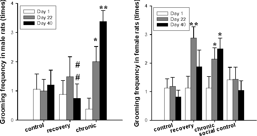 PDF] Effects of long-term stress and recovery on the prefrontal