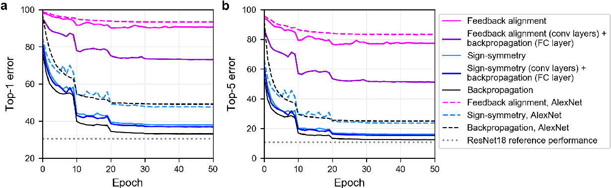 Figure 1 for Biologically-plausible learning algorithms can scale to large datasets