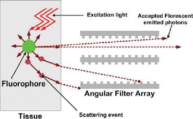 Macroscopic fluorescent lifetime imaging in turbid media