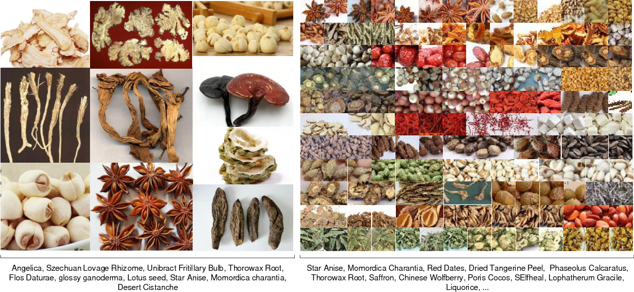 Figure 1 for Chinese Herbal Recognition based on Competitive Attentional Fusion of Multi-hierarchies Pyramid Features