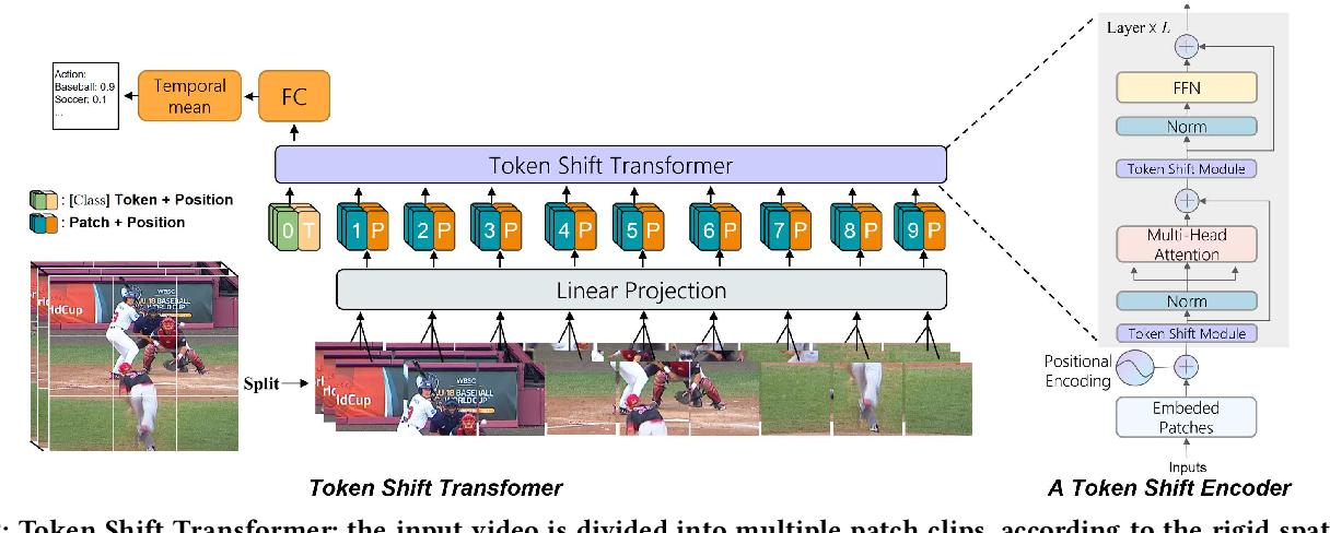 Figure 3 for Token Shift Transformer for Video Classification