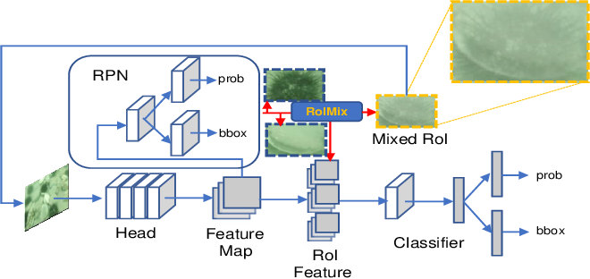 Figure 3 for RoIMix: Proposal-Fusion among Multiple Images for Underwater Object Detection