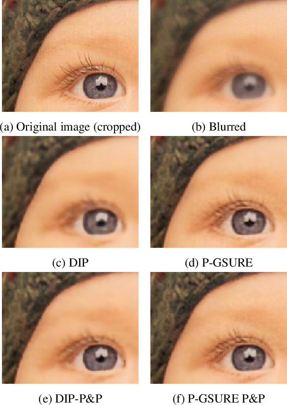 Figure 1 for Image Restoration by Deep Projected GSURE
