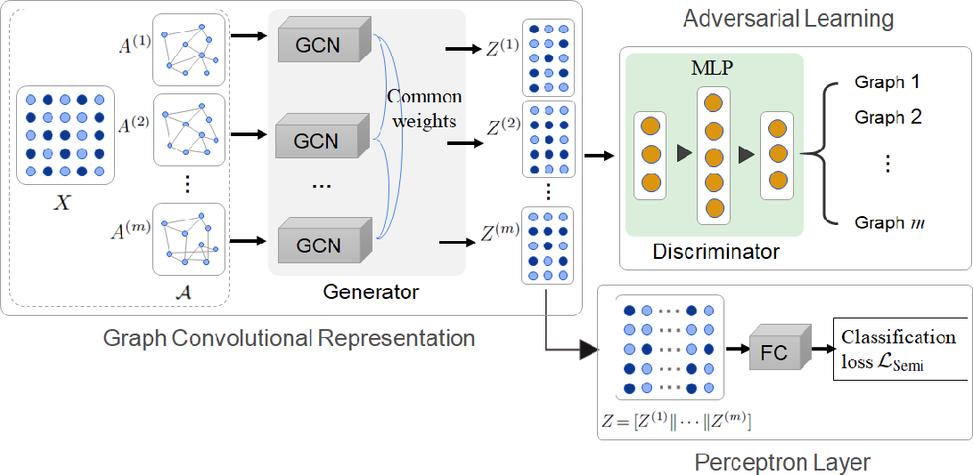 Figure 1 for Multiple Graph Adversarial Learning
