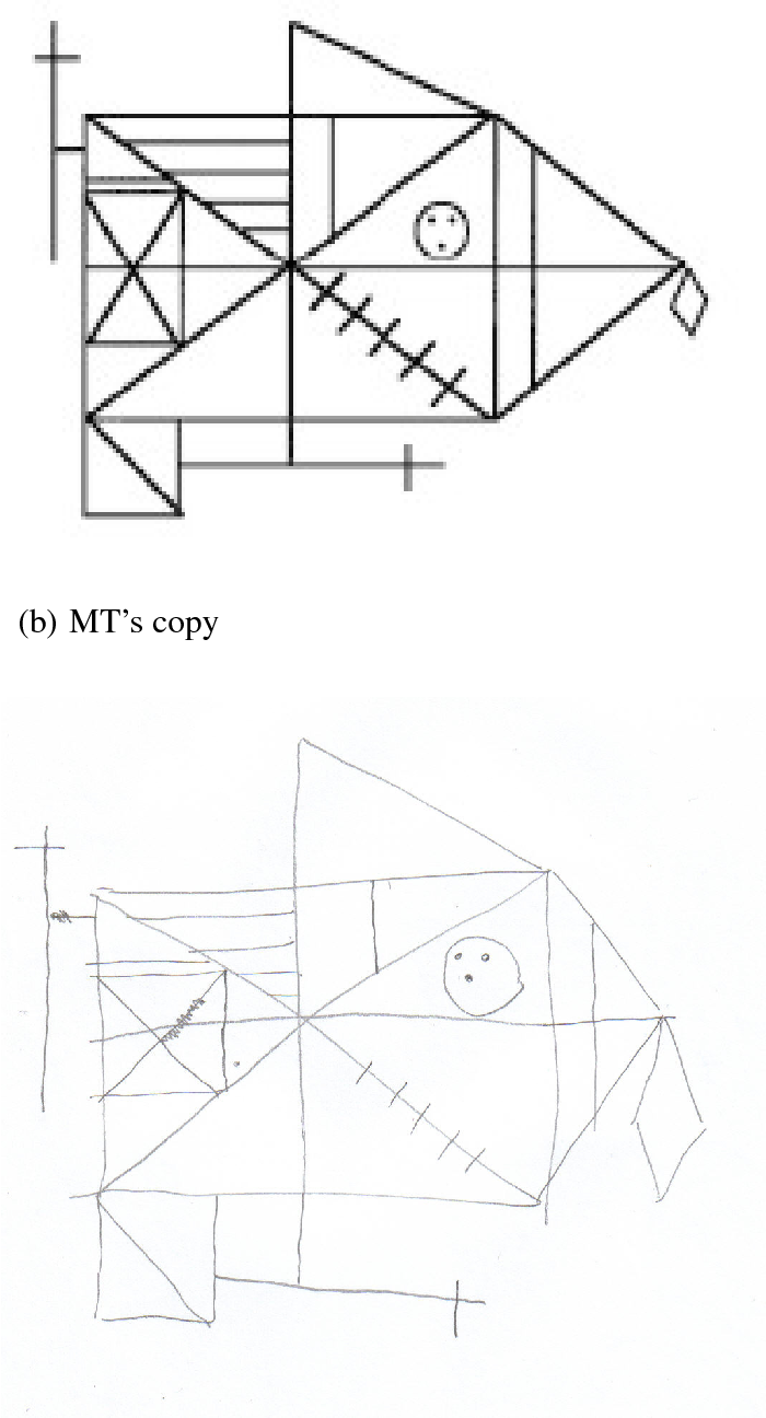 figure 2 from impaired integration of object knowledge and visual Washington Area figure 2 a shows the original rey figure and b mt s copy
