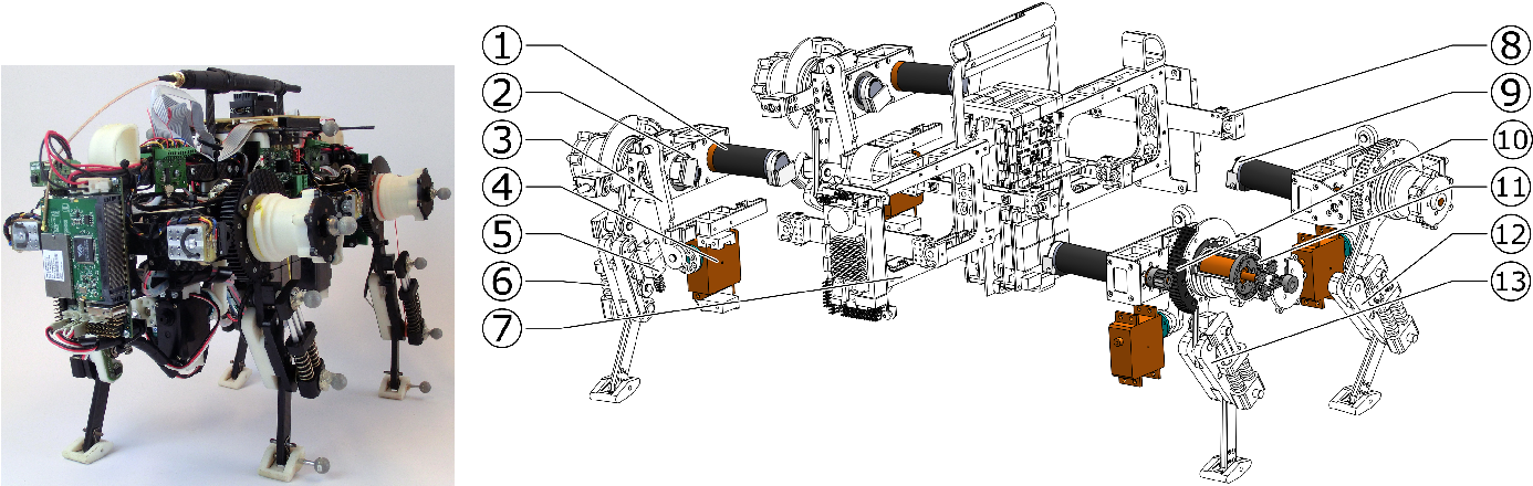 Figure 1 for Oncilla robot: a versatile open-source quadruped research robot with compliant pantograph legs