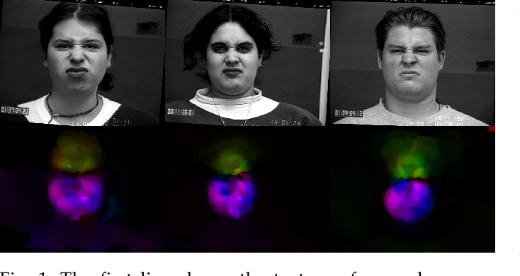 Figure 1 for Dynamic Facial Expression Recognition under Partial Occlusion with Optical Flow Reconstruction