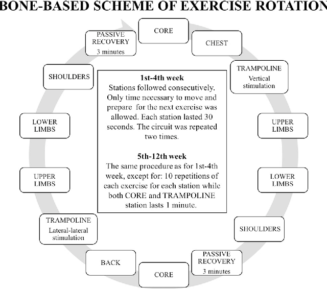 Circuit Training For Bone Health Efficacy Of The Bone Based