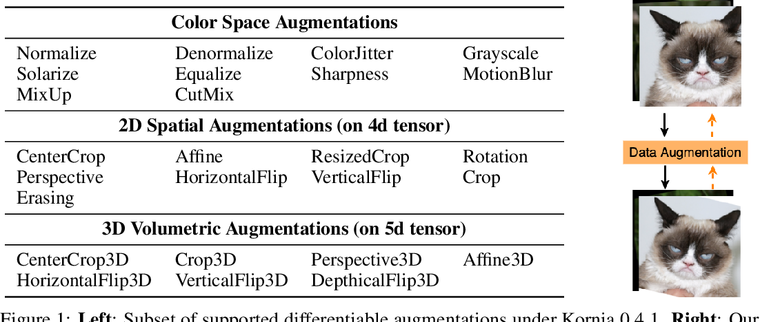 Figure 1 for Differentiable Data Augmentation with Kornia