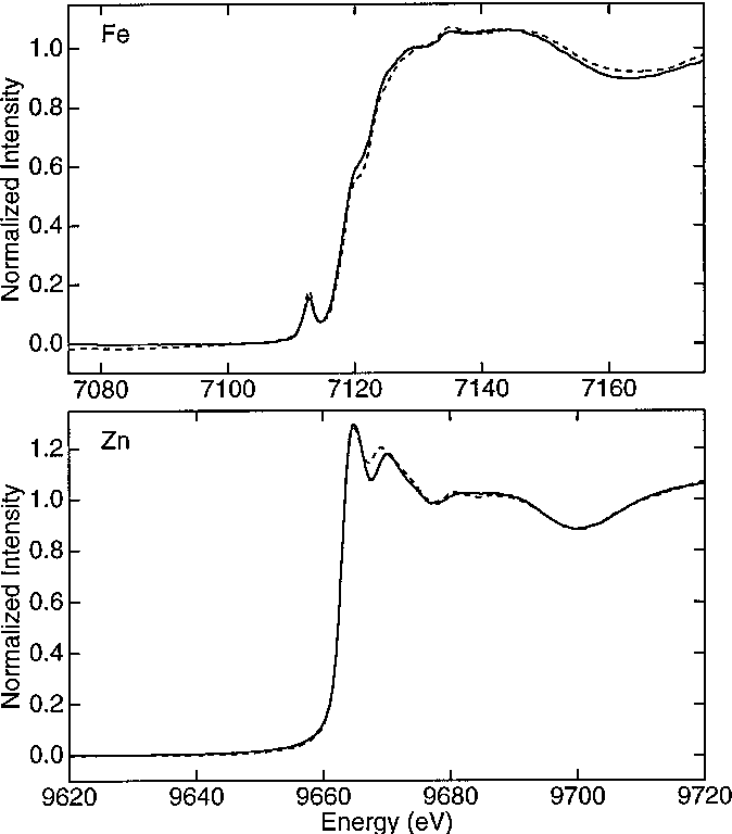 Fig. 4 Fe X-ray absorption edge spectra of: top [Fe]TFB-NTD (——) compared to C. pasteurianum rubredoxin (– – –) [34]; bottom [Zn]TFB-NTD (——) compared to the Zn-substituted P. furiosus rubredoxin (– – –) (M. K. Eidsness, J. Dong, D. M. Kurtz, R. A. Scott, unpublished observations)