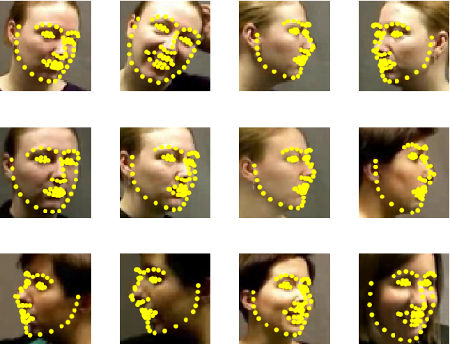 Figure 3 for Evaluation of Dense 3D Reconstruction from 2D Face Images in the Wild