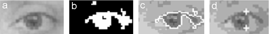Fig. 8. (a) Eye image, (b) threshold eye image, (c) contour traced eye image, and (d) detected points.