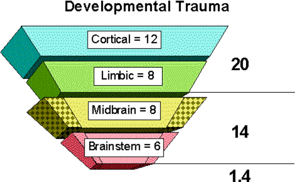 Figure 6 From Neurodevelopmental Factors In The Cycle Of Violence