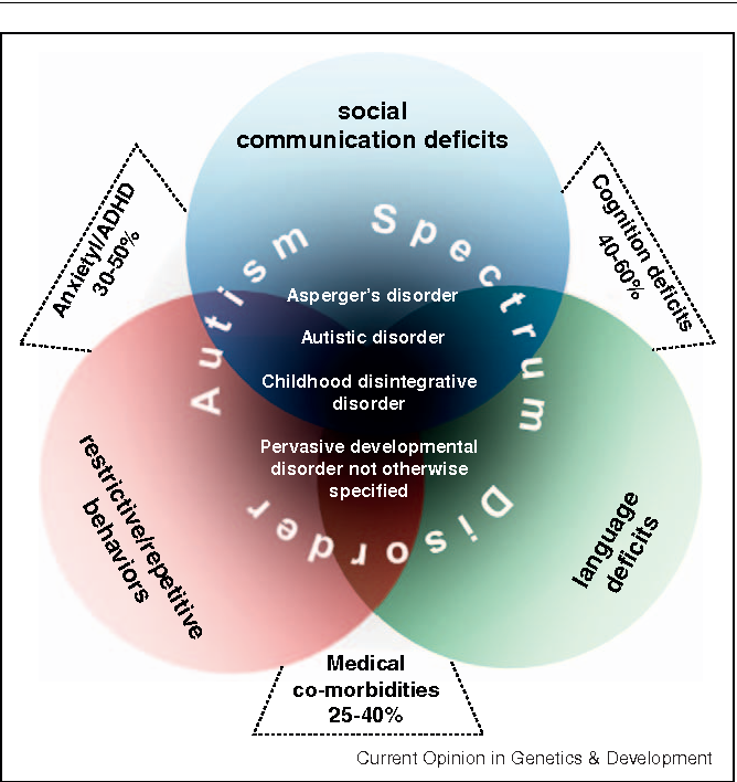 Why Autism Spectrum Disorders Are Under >> Genetic Architecture In Autism Spectrum Disorder Semantic Scholar