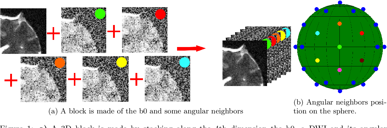Figure 2 for Non Local Spatial and Angular Matching : Enabling higher spatial resolution diffusion MRI datasets through adaptive denoising