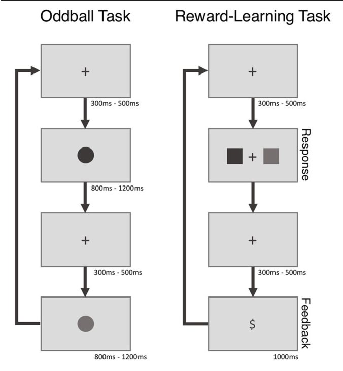 Figure 1 from Choosing MUSE: Validation of a Low-Cost, Portable EEG
