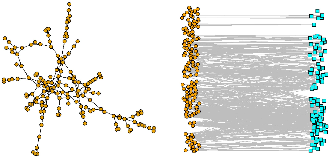 Figure 1 for Graph matching between bipartite and unipartite networks: to collapse, or not to collapse, that is the question