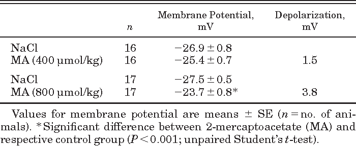 Table 1. Influence of an intraperitoneal injection of MA on hepatocyte membrane potential 50 min after injection in anesthetized ZUR:SD rats