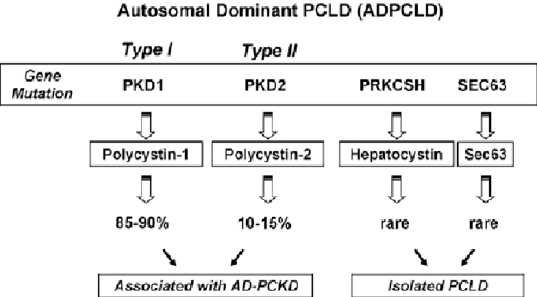 Figure 2 from polycystic liver disease genetics semantic scholar diagram of the genetics of polycystic liver disease in its autosomic dominant ccuart Image collections